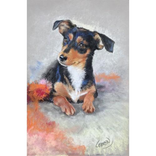 Portrait animalier aux pastels